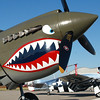 P-40 WARHAWK FIGHTER